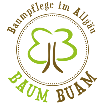 Logo der BaumBuam