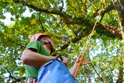 Aaron Althammer wendet die Seilklettertechnik an