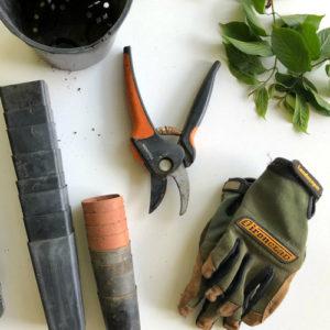 Gartenpflege Werkzeuge